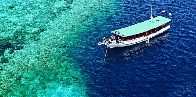 01-right_5-star-dive-services